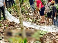 Ditinggal Isteri, Pria 49 Tahun Ini Ditemukan Membusuk