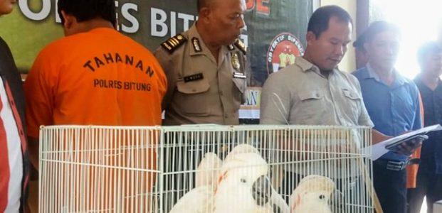Tangkap Dua Tersangka, Polisi Amankan 14 Ekor Satwa Langka